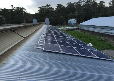Commercial Solar Alderley Creek Eggs Booral NSW