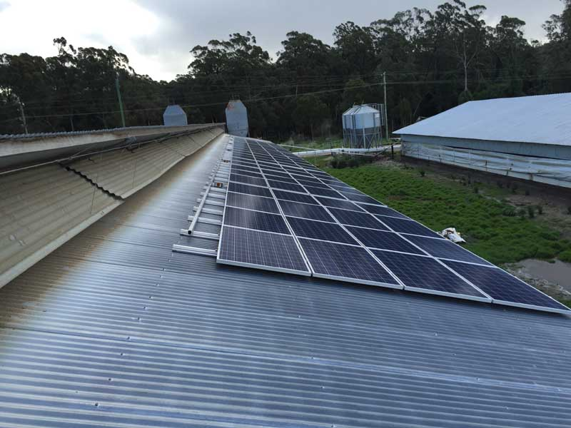 Commercial Solar Booral NSW