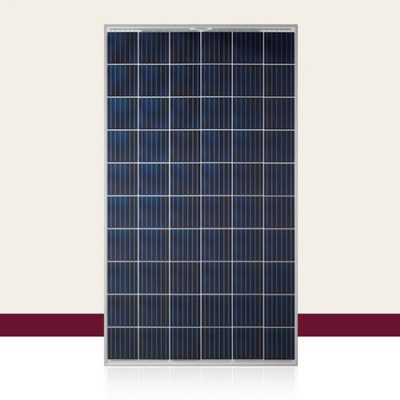 Q Cells Q POWER G5 Solar Panel